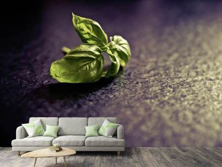 Photo Wallpaper Basil leaves