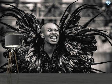 Papier peint photo Skunk Anansie