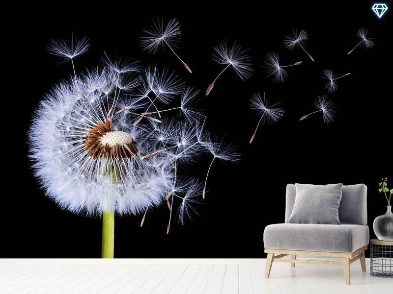 Fotomurale Dandelion Blowing