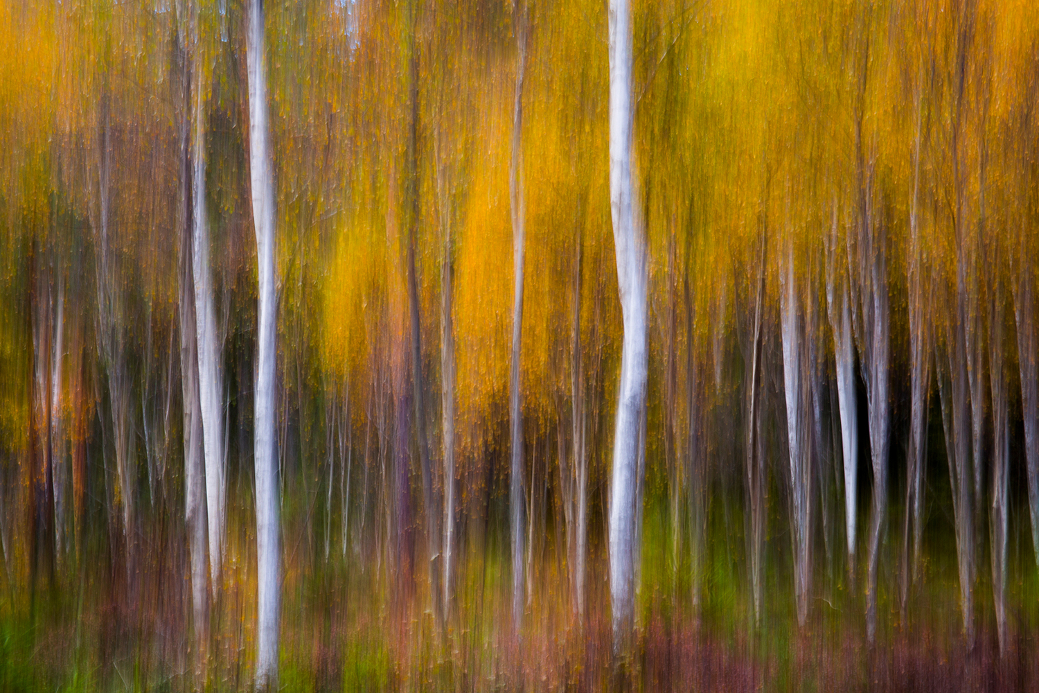 Photo Wallpaper Abstract Fall