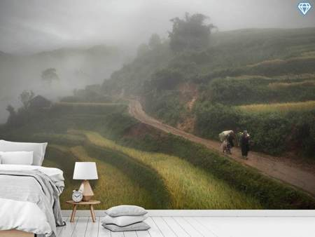 Photo Wallpaper Fog
