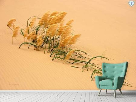 Fotomurale Pampas Grass In Sand Dune