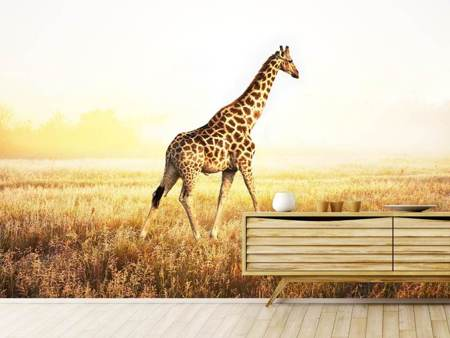 Papier peint photo La girafe