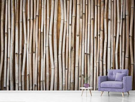 Photo Wallpaper Dried Bamboos